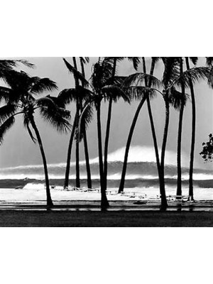 Photographie Surf vintage JOHN SEVERSON 'Spartan Reef Maui 1978'